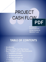 Final Project Cash Flows Ppt