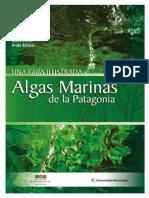 Algas Marinas de La Patagonia