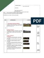 Seccion 7 Futbol Practica Pedagogica