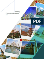 Asia Pacific Holding Company Analysis 2016