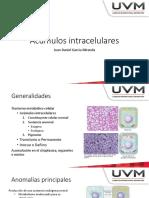 Acumulos Intracelulares [Patologia-Robin]