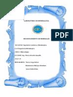 MINERALOGIA LABORATORIO.docx