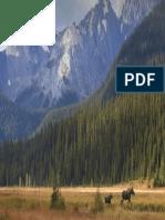 Protector de pantalla (39).pdf