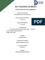 BIOPROCESOS PRÁCTICA.pdf