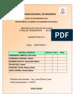 PROCTOR-LAB01 falta.docx