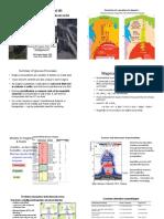 2 Lima Porphyry alteration notes.pdf