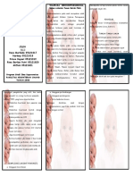 Copy of Leaflet Hiperbilirubin