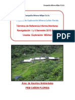 TDR Informe Revegetación Áreas Usadas 2da MEIAsd.