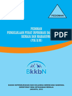 BUKU_PIK_REMAJA.pdf