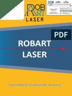 Robart WoodArt Galvo Lazer