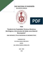 Estudio de las Propiedades Térmicas, Mecánicas, Morfológicas y Estructurales del Adobe como Material Biocompósito