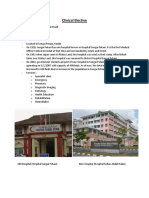 Clinical Elective HSAH.docx