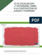 PROCESO DE SOCIALIZACION PRIMARIA Y SECUNDARIA, COMO.pptx