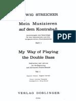 streicher 1.pdf