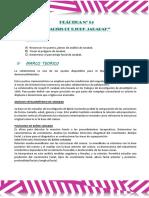 Práctica Nº 14 Fer - Jarabak