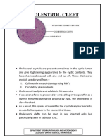 Cholestrol Cleft