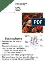 Basic Hematology