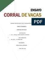 CORRAL DE VACAS.docx