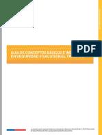 D019-PR-500!02!001 Guía de Conceptos Básicos e Indicadores de Segiuridad y Salud en El Trabajo (1)