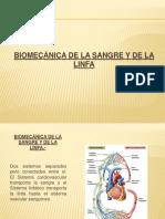 12 Expo Bio Linfa y Sangre