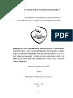 ANTON DELGADO PROYECTO II CICLO.docx