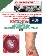 TERCERA-PARTE.TERCERA-A-OCTAVA-SEMANA-PERIODO-EMBRIONARIO.pdf