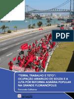 Fernando-Ocupação-Amarildo.pdf