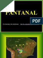 Pantanal.pps