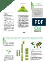 EXPO UPOV.pdf