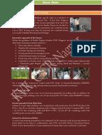 success stories.pdf