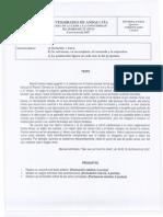 m25_2007_comentario_texto.pdf