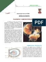 PLACENTA_Y_MEMBRANAS_FETALES.pdf