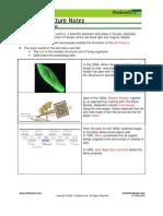 Bio Notes 3.1.1 Cytology