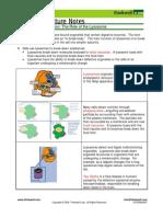Bio Notes 3.1.8 Vacuoles