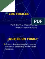 Ciencia y Tecnologia-fosiles