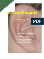130040882 Auriculoterapia MANUAL
