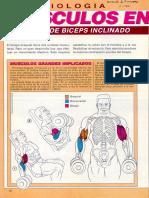 Ejercicios de Fortalecimiento (Musculacion) Tomados de Muscle & Fitness - 102 Pags en PDF