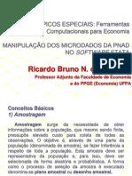 AMOSTRA COMPLEXA - PNAD