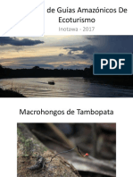 Curso de Guías Amazónicos de Ecoturismo