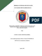(S)Tesis Morones Fortifica Galleta Avena Impacto Vida Anaquel Tesis Oct17 - Copia
