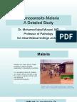 Malaria Lecture Revised