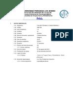 Silabo Taller Impar -Plan 2015 Taller v Masoterapia i 2018 - II