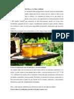 Diferencias Entre La Miel Pura y La Miel Artificial