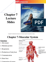 chapt07_lecture.ppt