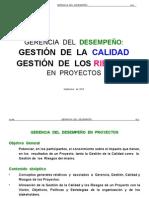 GERENCIA DEL DESEMPEÑO PROYECTOS  2010