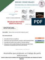 TPD-Pedro.pptx