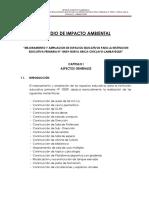 Estudio de Impacto Ambiental-Nueva Arica.docx