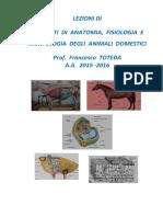 Appunti Di Anatomia e Fisiologia Animale