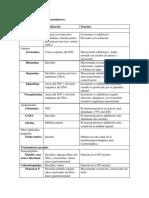 Clasificación de neurotransmisores