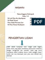 Anatomi Lidah (29-32)